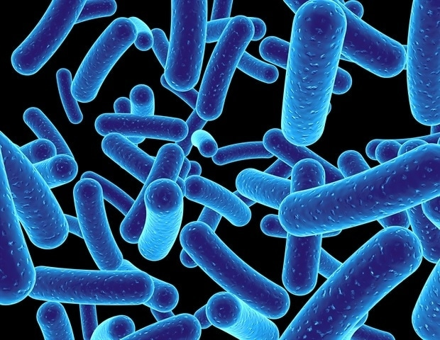 Some Medications Can Accumulate in Gut Bacteria